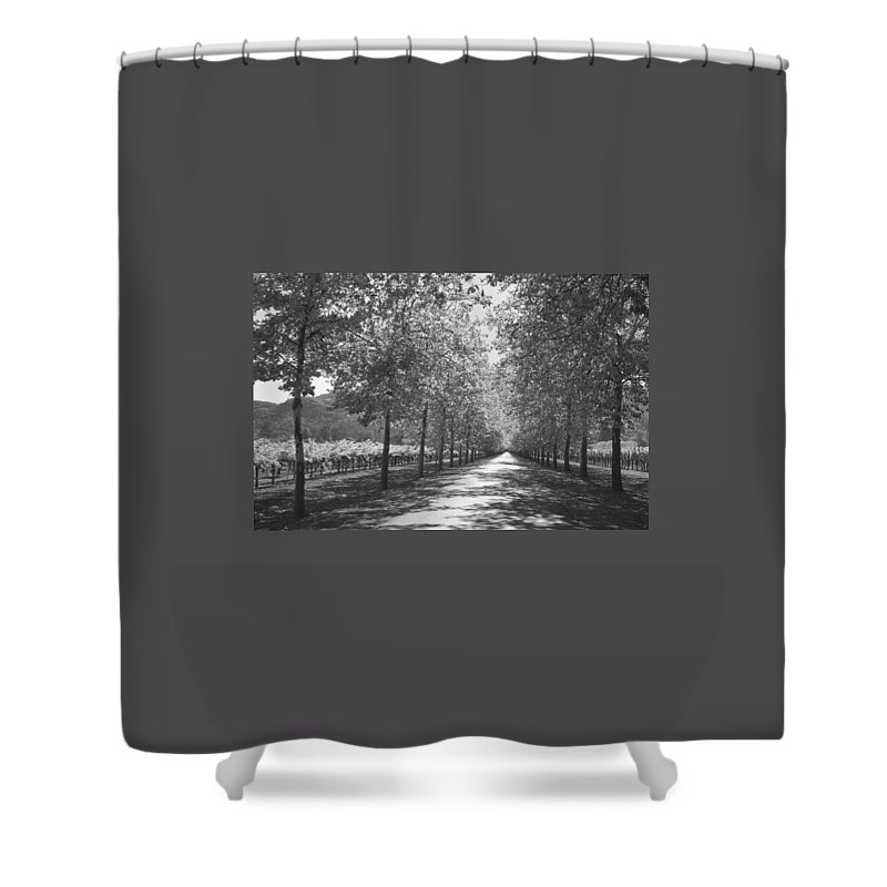 Black And White Shower Curtain featuring the photograph Wine Country Napa Black And White by Suzanne Gaff