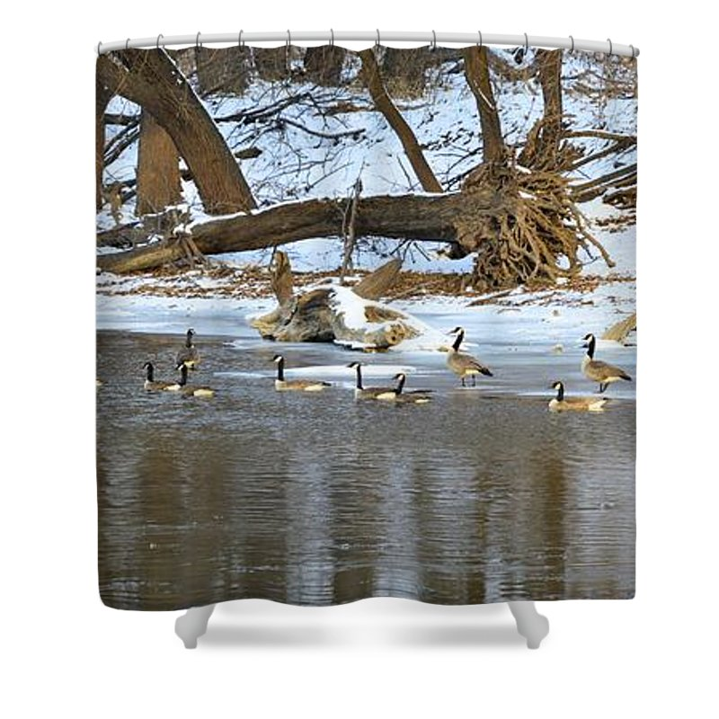 River Shower Curtain featuring the photograph Winter Gaggle by Bonfire Photography