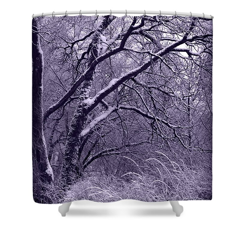 Winter Shower Curtain featuring the photograph Winter In Purple by Carol Groenen