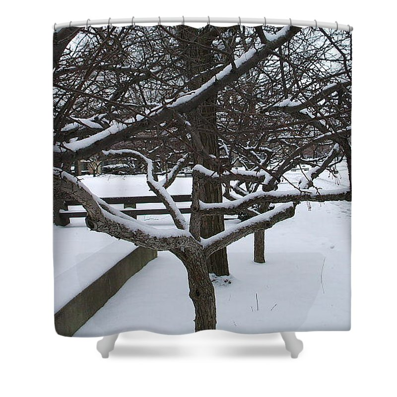 Landsape Shower Curtain featuring the photograph Winter by Jo Dawkins