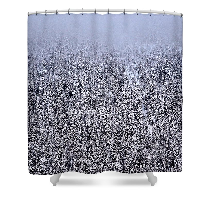 Mountain Shower Curtain featuring the photograph Winter Mystery by Jody Partin