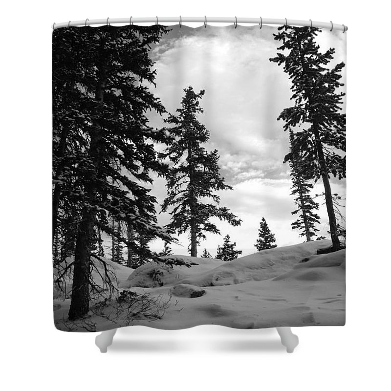 Shower Curtain featuring the photograph Winter Pines Silhouetted Against The Sky by Cascade Colors