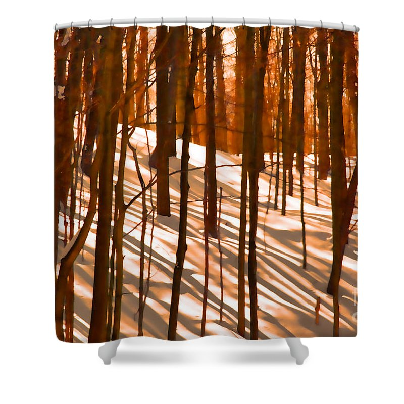 Sunset Shower Curtain featuring the photograph Winter Shadows by Andrea Kollo