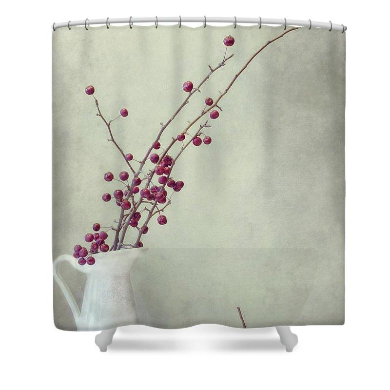 Apple Shower Curtain featuring the photograph Winter Still Life by Priska Wettstein