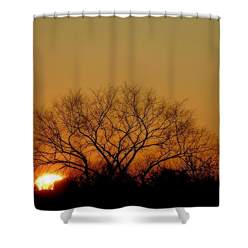 Tree Shower Curtain featuring the photograph Winter Sunset by Leeon Photo