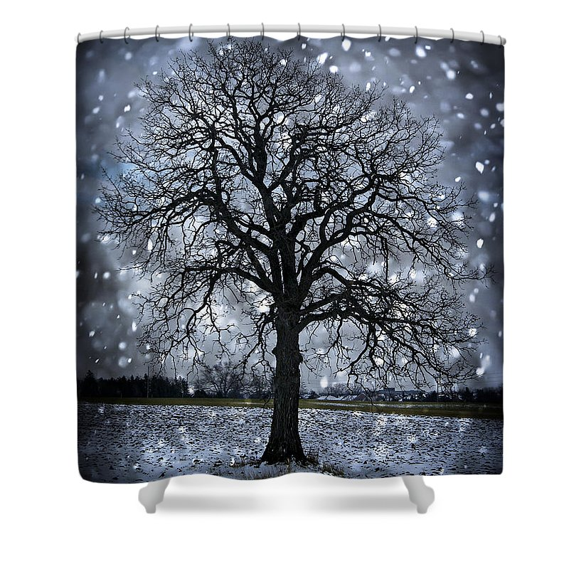 Lonely Shower Curtain featuring the photograph Winter Tree In Snowfall by Elena Elisseeva
