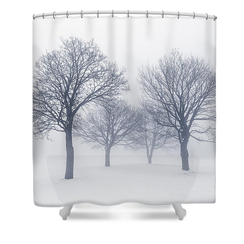 Winter Trees In Fog Shower Curtain For Sale By Elena Elisseeva