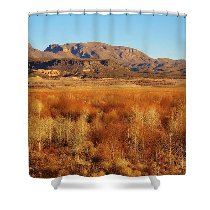 Roena King Shower Curtain featuring the photograph Winter Trees Landscape 1 by Roena King