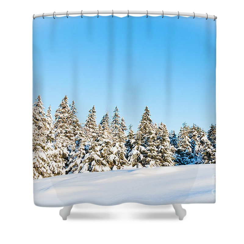 Landscapes Shower Curtain featuring the photograph Winter Wonderland by Cheryl Baxter
