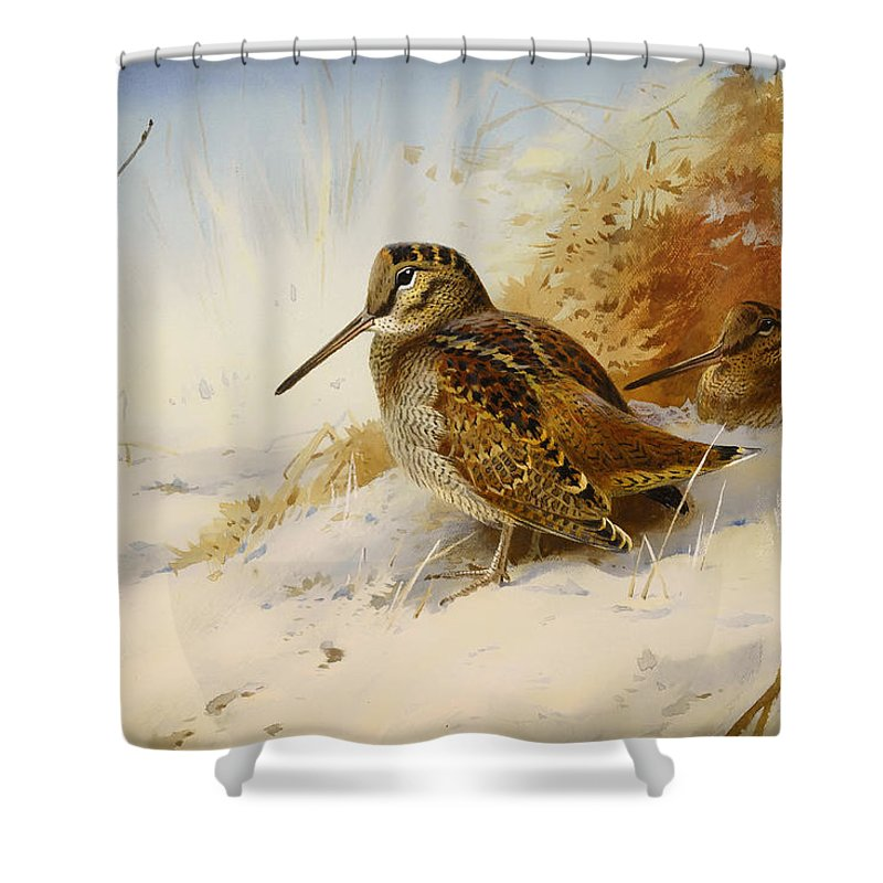 Woodcock Shower Curtains