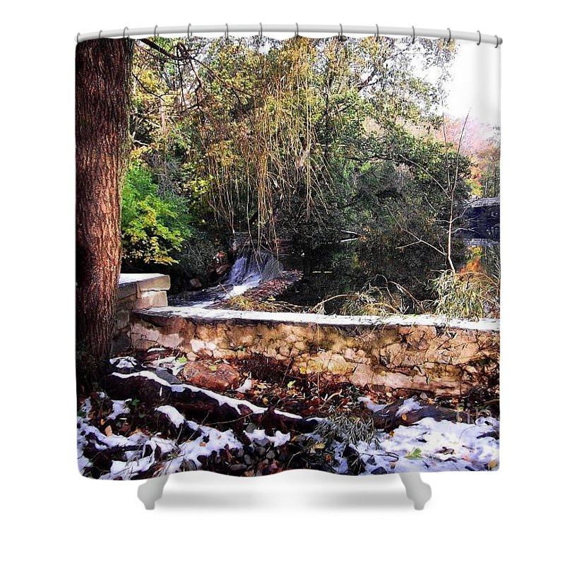 Nature Shower Curtain featuring the photograph Winter Woods With Melting Snow by Miriam Danar