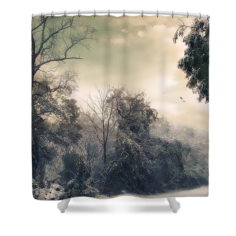 Winter Shower Curtain featuring the photograph Winter's Tones by Jessica Jenney