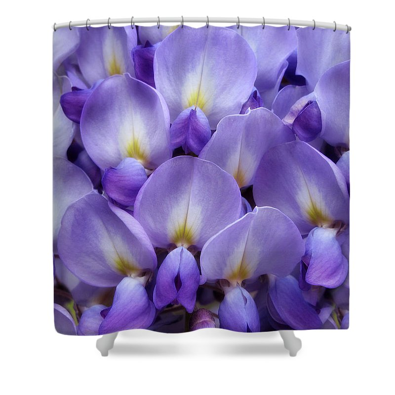 Flowers Shower Curtain Featuring The Photograph Wisteria Petals By Jessica  Jenney