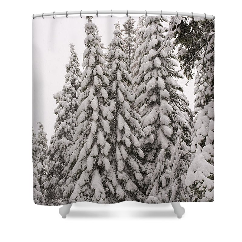 Shaver Lake Shower Curtain featuring the photograph Wnter Snow At Shaver Lake by Doug Holck