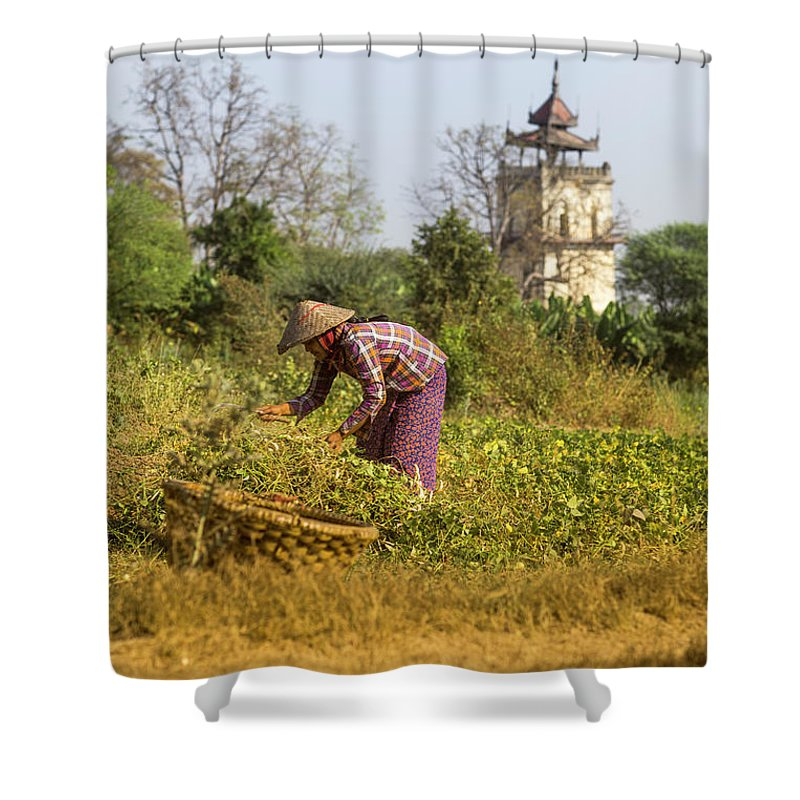 Three Quarter Length Shower Curtain featuring the photograph Woman Weeding At Nanmyin Tower by Merten Snijders