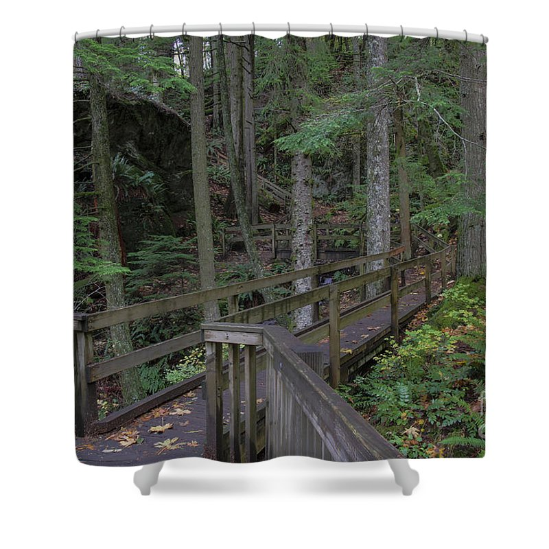 Landscape Shower Curtain featuring the photograph Wooden Forest Trail by Darleen Stry