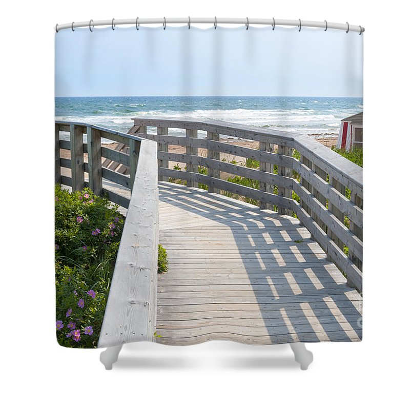 Beach Shower Curtain featuring the photograph Wooden Walkway To Ocean Beach by Elena Elisseeva