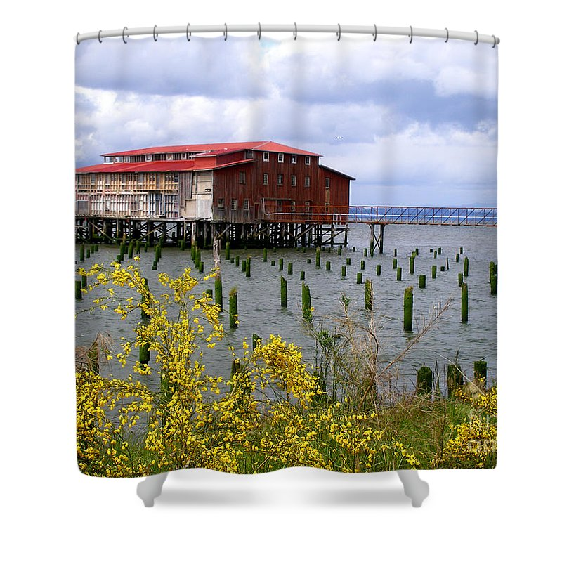 Columbia River Shower Curtain featuring the photograph Yellow Columbia by Dawn Kori Snyder