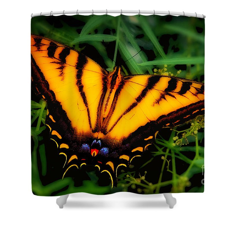Yellow Orange Tiger Swallowtail Butterfly Fine Art Photography Prints Shower Curtain featuring the photograph Yellow Orange Tiger Swallowtail Butterfly by Jerry Cowart