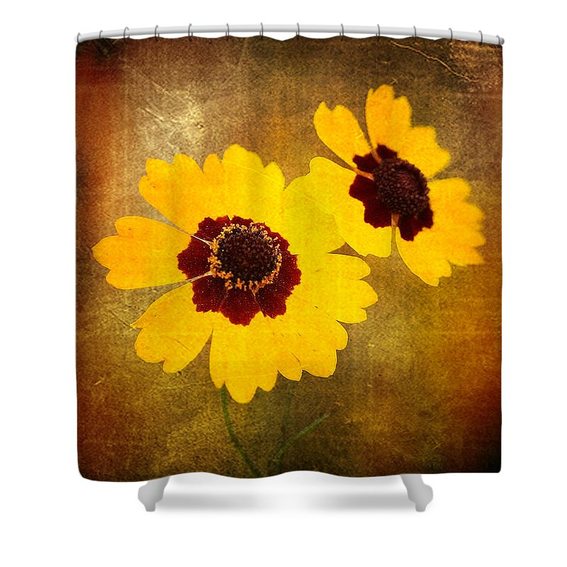 Flower Shower Curtain featuring the photograph Yellow Prize by Scott Pellegrin