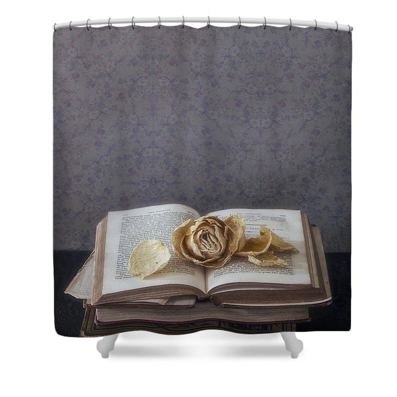Designs Similar to Yellow Rose by Joana Kruse