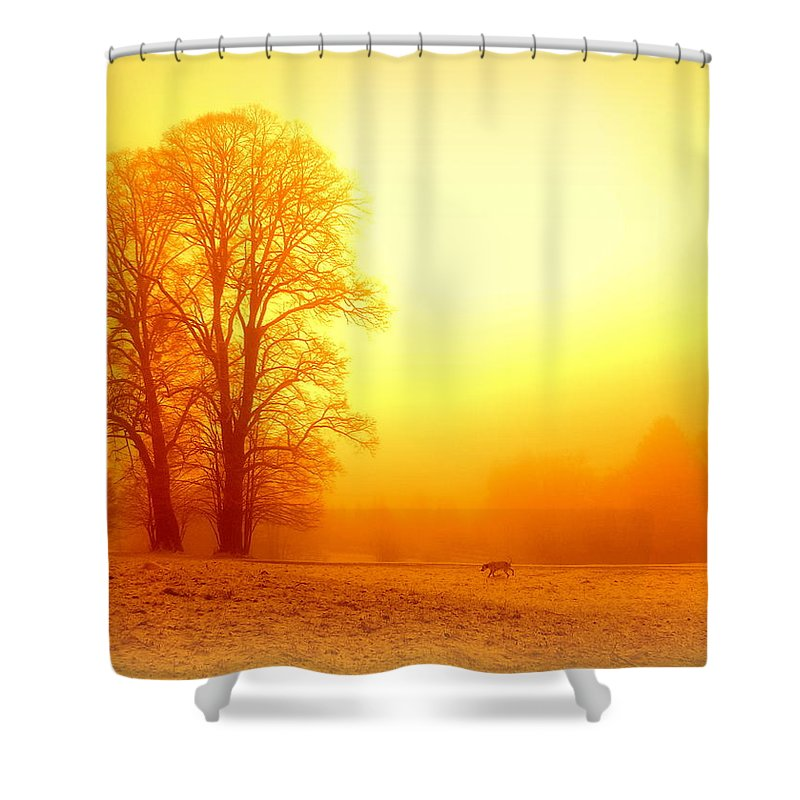 Yellow Winter Sunrise Shower Curtain For Sale By The Creative Minds Art And Photography