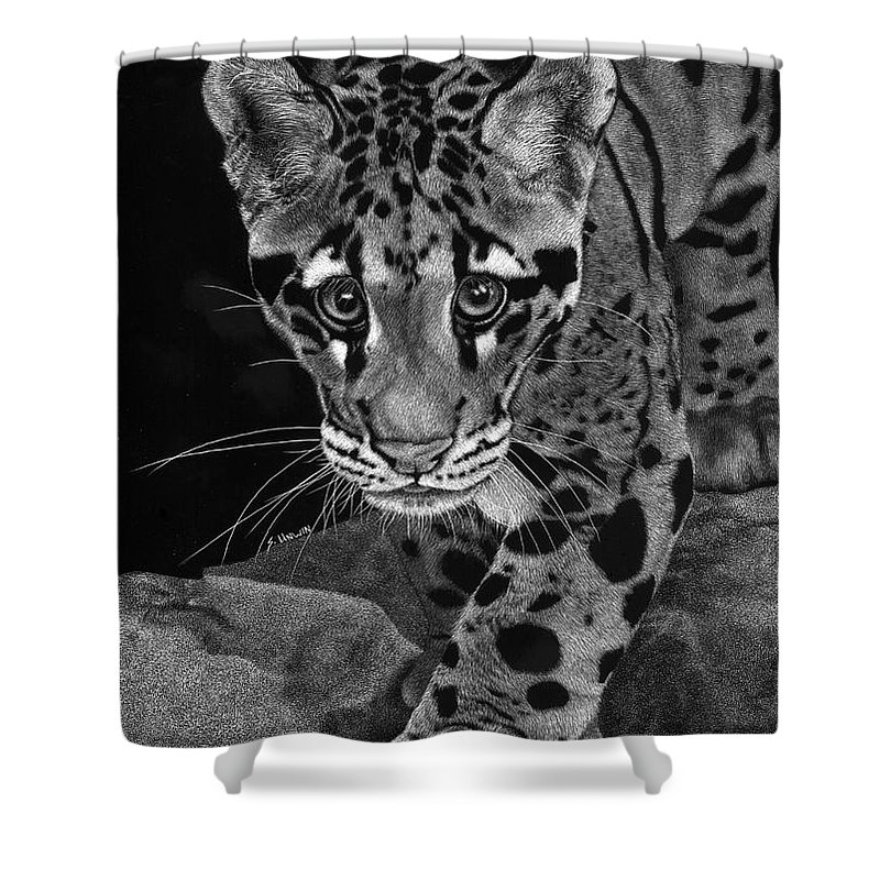 Scratch Board Shower Curtain Featuring The Drawing Yim