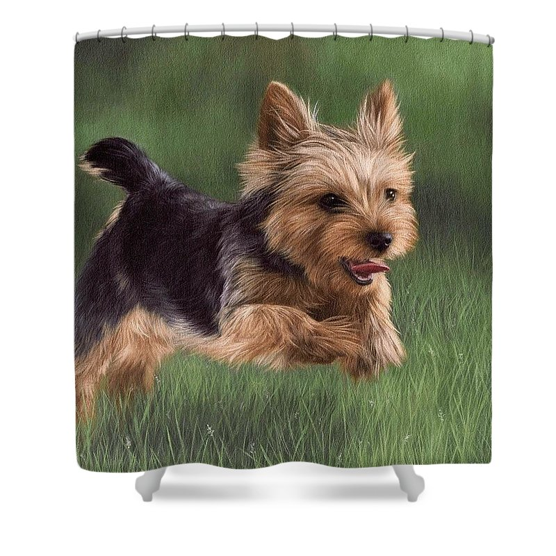 Yorkshire Terrier Shower Curtains