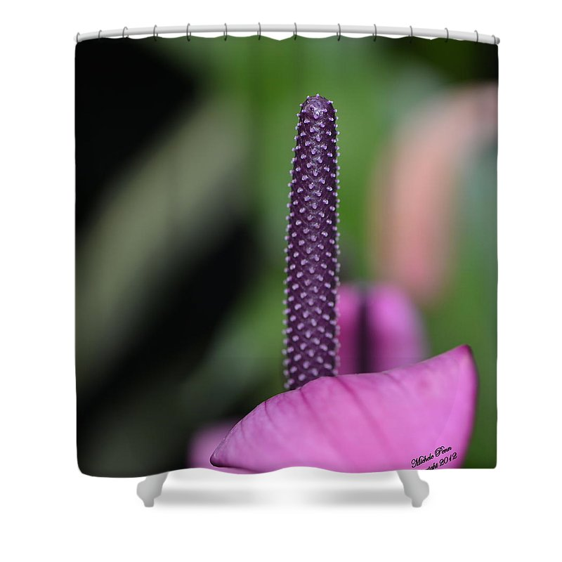 Flower Photograph Shower Curtain featuring the photograph We Are One - You Are Number One by Michele Penn