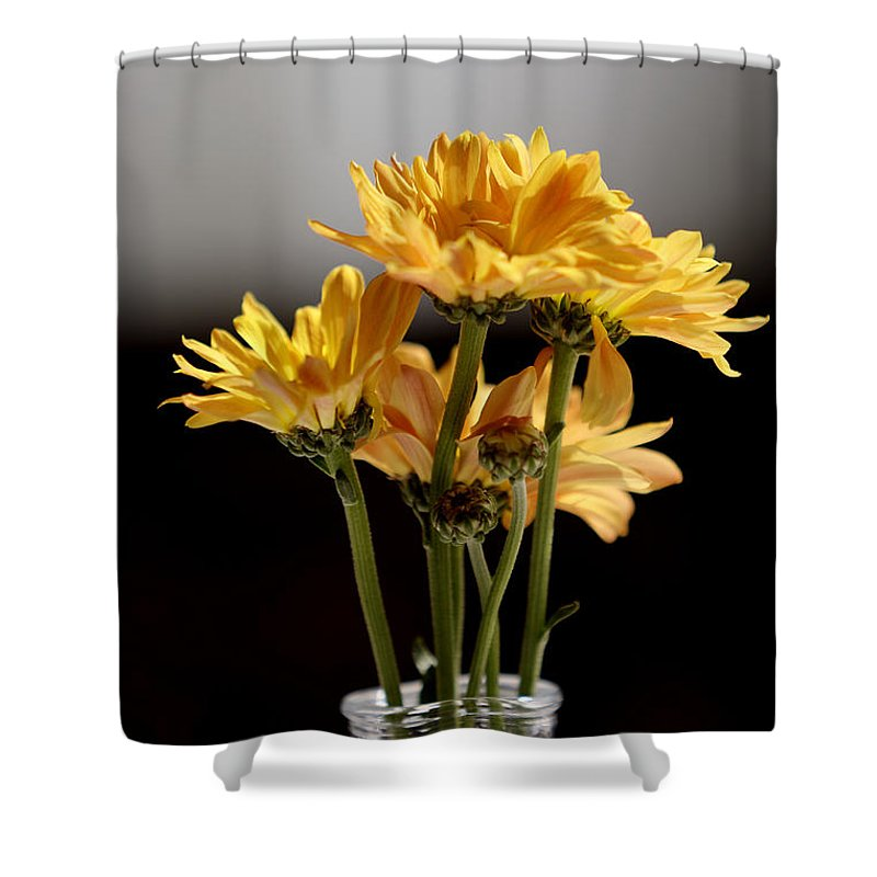 Flowers Shower Curtain featuring the photograph You Are The Color In My Life by Steve Gravano