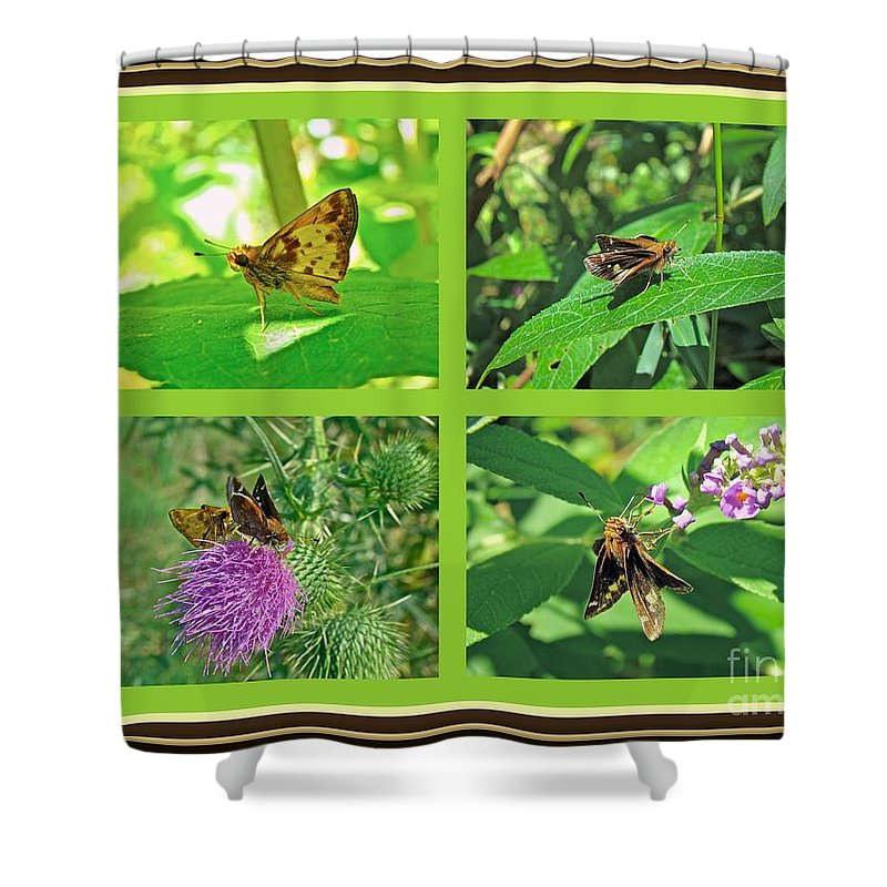Butterfly Shower Curtain featuring the photograph Zabulon Skipper Butterfly - Poanes Zabulon by Mother Nature