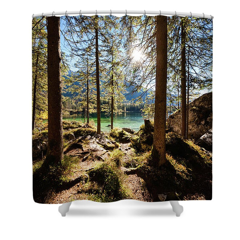 Tranquility Shower Curtain featuring the photograph Zauberwald In Autumn by Jorg Greuel