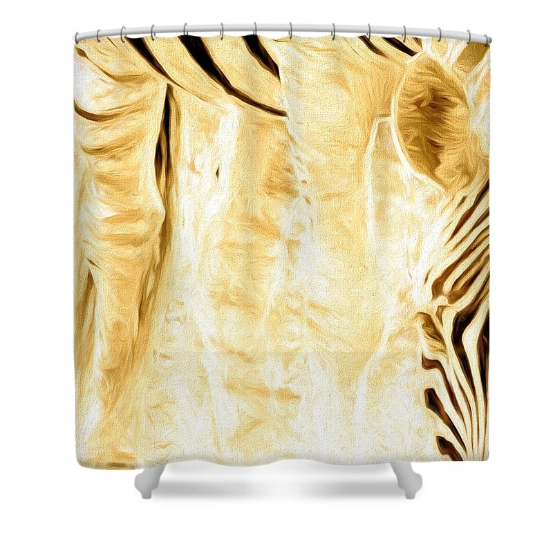 Zebra Shower Curtain featuring the photograph Zebra Up Closer by Alice Gipson