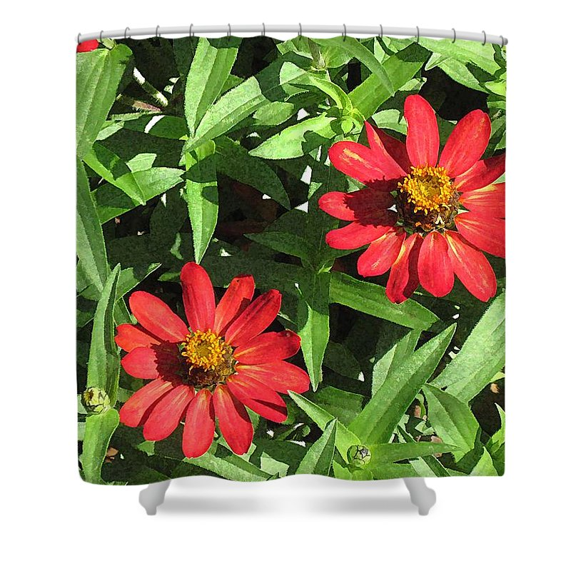Zinnia Shower Curtain featuring the digital art Zinnia Gardens-1 by Doug Morgan
