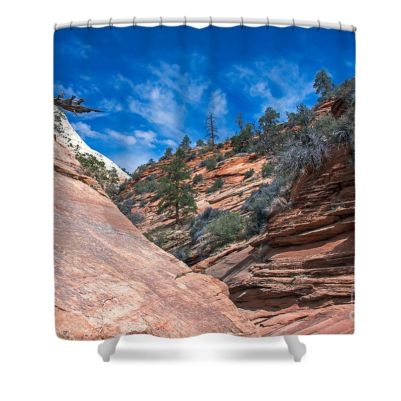 Zion National Parks Shower Curtain featuring the photograph Zion Beauty by Robert Bales