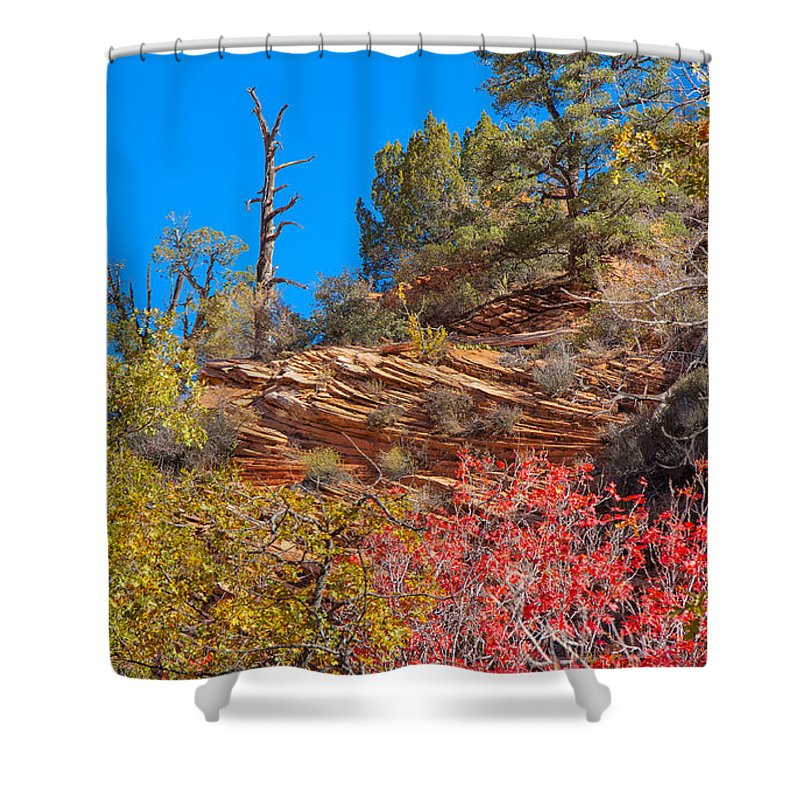 Landscape Shower Curtain featuring the photograph Zion Reds by John M Bailey