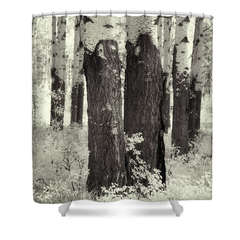 Trees Shower Curtain featuring the digital art Muleshoe Trees Infra Red by Diane Dugas