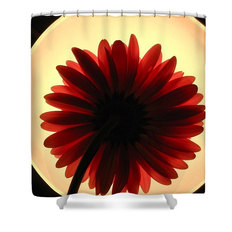 Gerber Photographs Shower Curtain featuring the photograph 00951 by Kimberlie Gerner