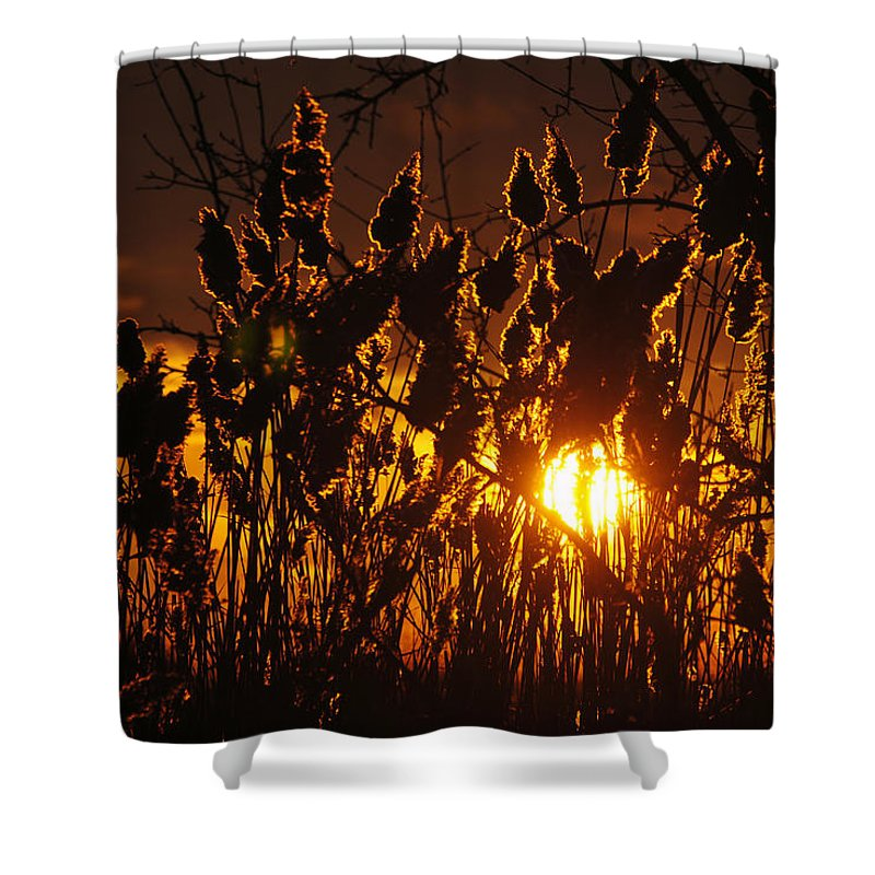 Shower Curtain featuring the photograph 05 Sunset by Michael Frank Jr