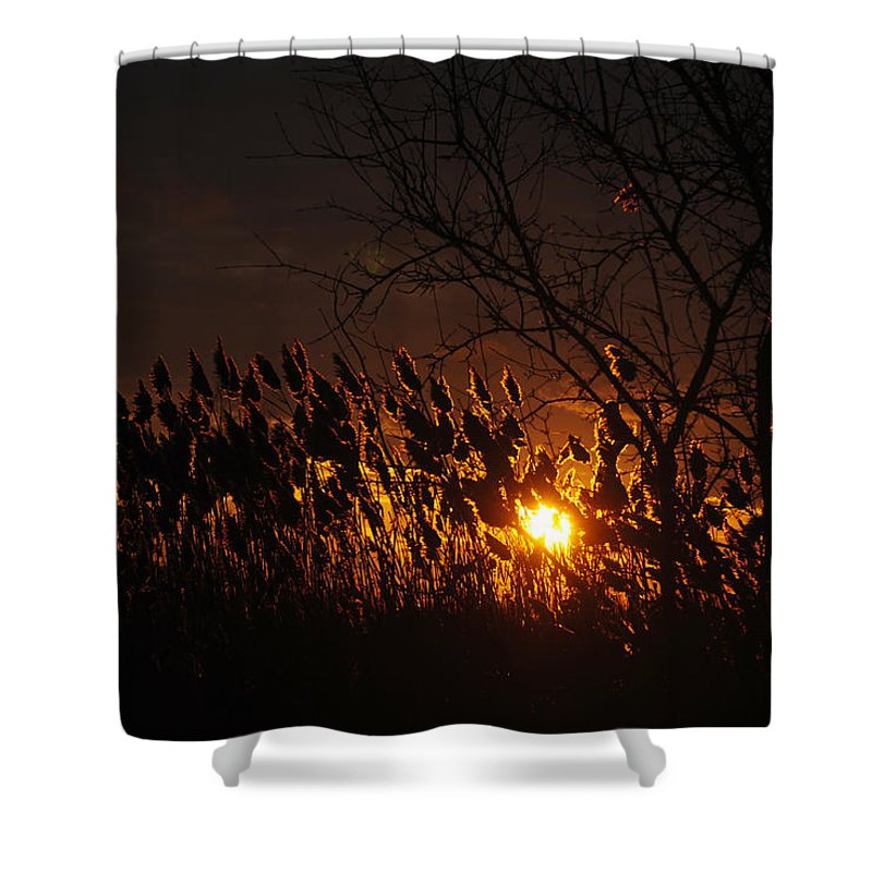 Shower Curtain featuring the photograph 06 Sunset by Michael Frank Jr