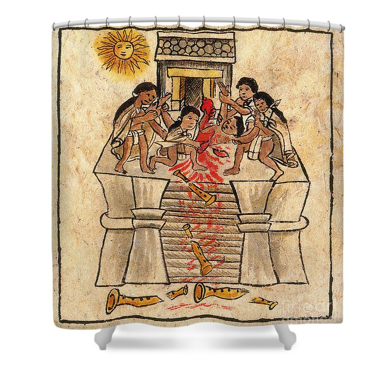 Aztec Shower Curtain Featuring The Photograph Human Sacrifice Codex By Photo Researchers