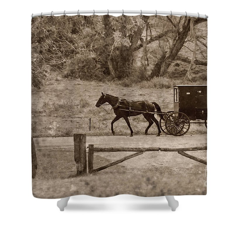 Amish Shower Curtain featuring the photograph Buggy by David Arment