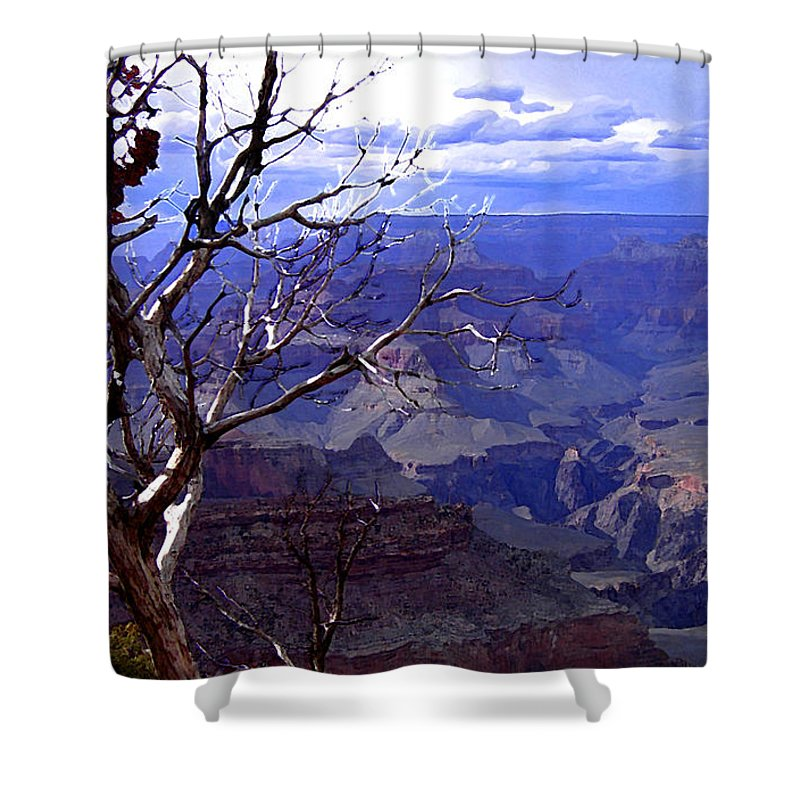 For Contest Entry Shower Curtain featuring the photograph Grand Canyon 1 by Mike Nellums