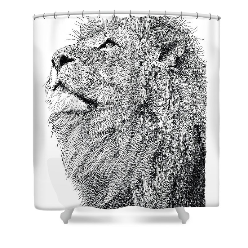 Lion Shower Curtain Featuring The Drawing By Scott Woyak