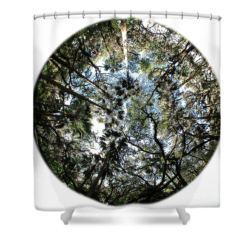 Green Shower Curtain featuring the photograph Looking Up by Peggy Starks