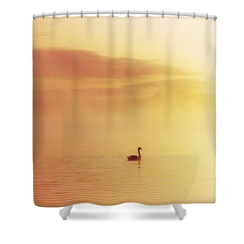 Animals Shower Curtain featuring the photograph Lough Leane, Killarney, Co Kerry by The Irish Image Collection