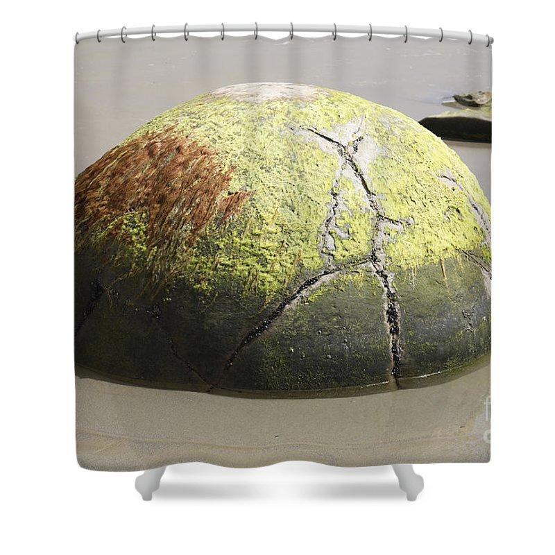 Close-up Shower Curtain featuring the photograph Moeraki Boulder, Koekohe Beach, New by Richard Roscoe