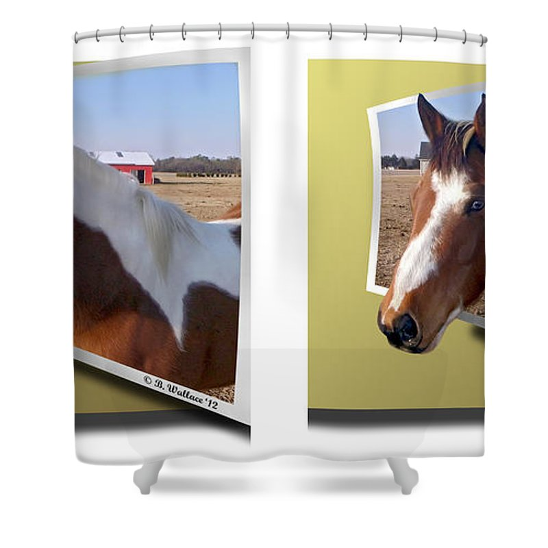 3d Shower Curtain featuring the photograph Pony Pose - Gently Cross Your Eyes And Focus On The Middle Image by Brian Wallace