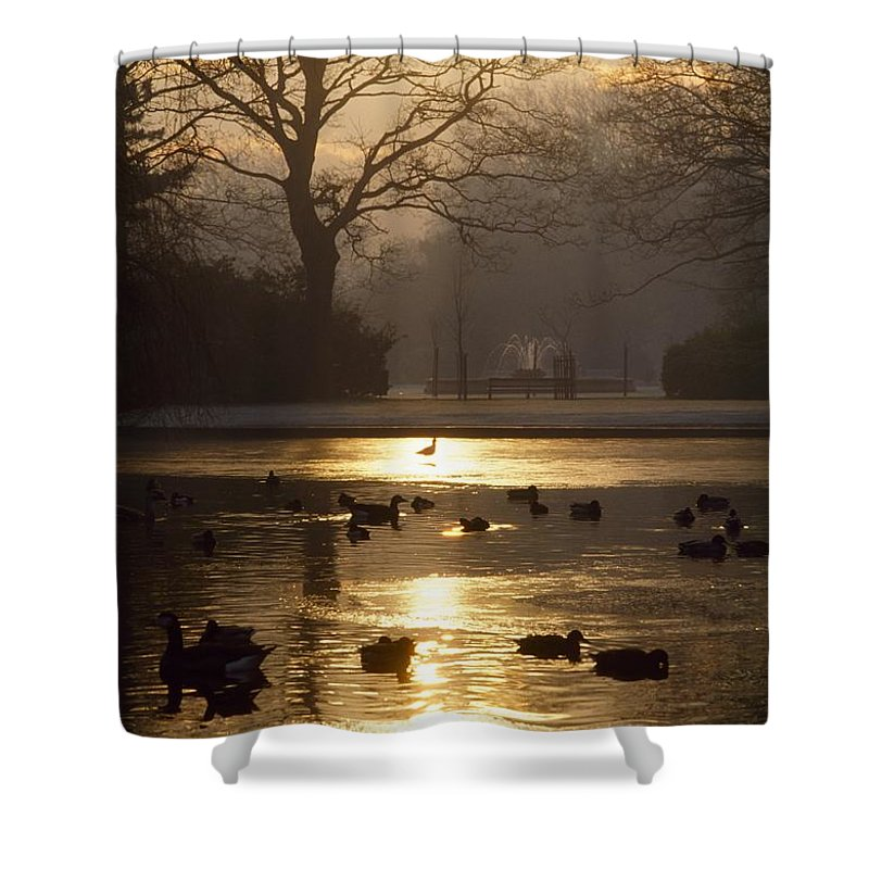 Back Lit Shower Curtain featuring the photograph Saint Stephens Green, Dublin, Co by The Irish Image Collection
