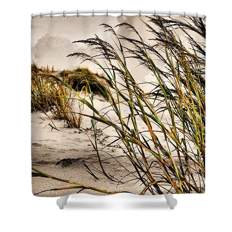Sea Oats Shower Curtain featuring the photograph Sea Oats by Kristin Elmquist